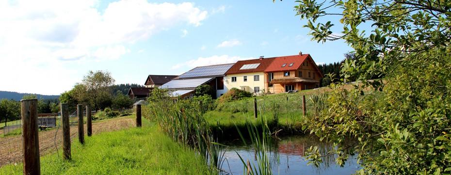 Biohof Teich