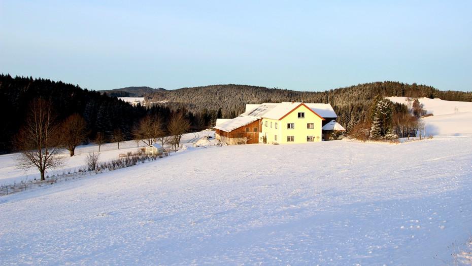 Biohof Thauerböck Winterlandschaft