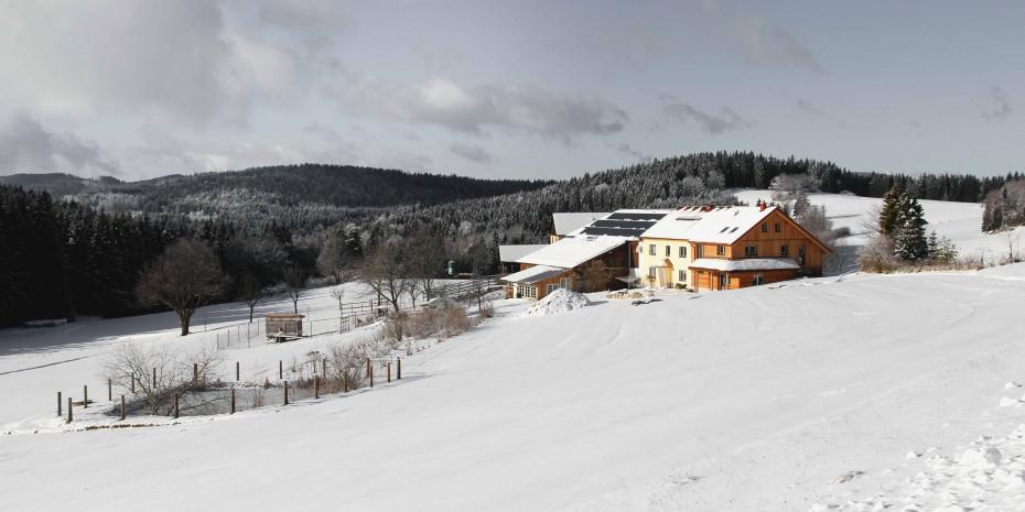 biohof-thauerboeck-winterlandschaft-sw
