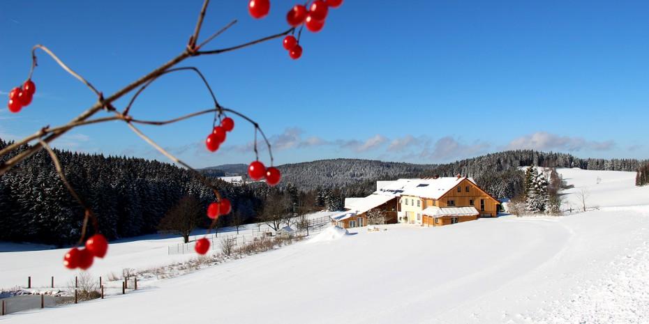 Biohof Winter