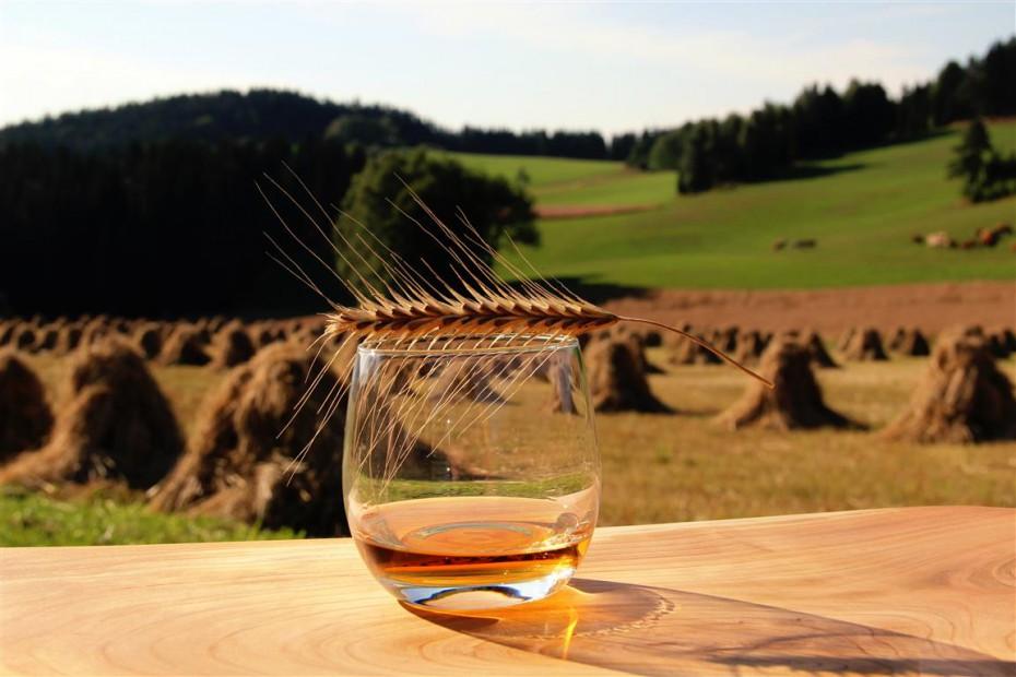 Whiskey Kaltenberger