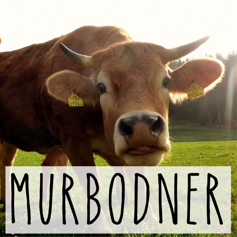 Murbodner_Biohof