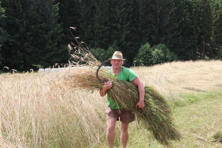 News_Biohof_Schnitterfest