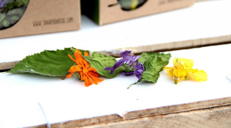 Teeblüten Teeblätter bio