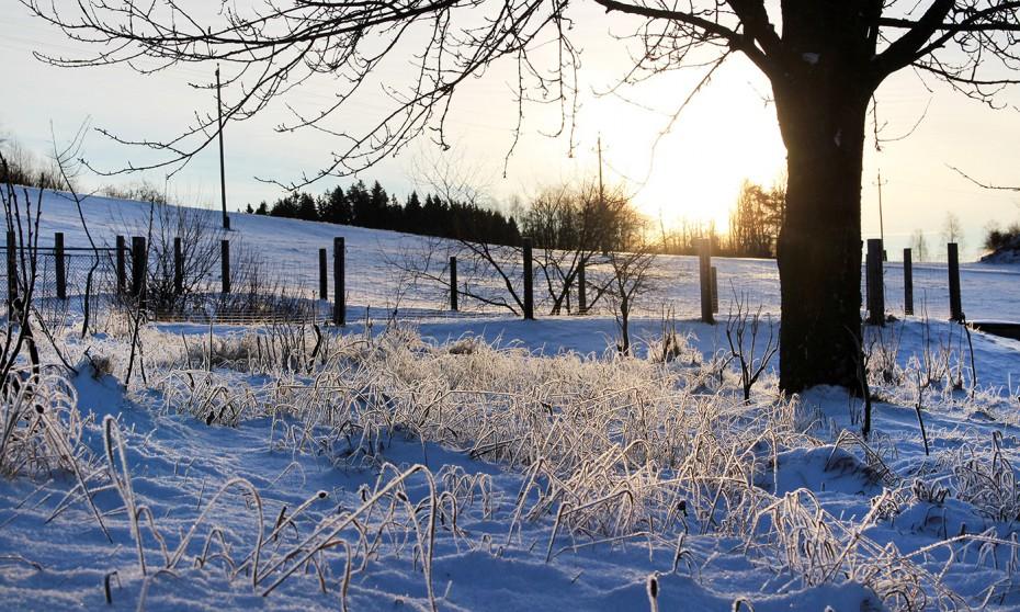 Winter Biohof