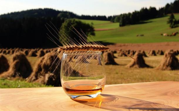 Kaltenberger Winterroggen Whisky