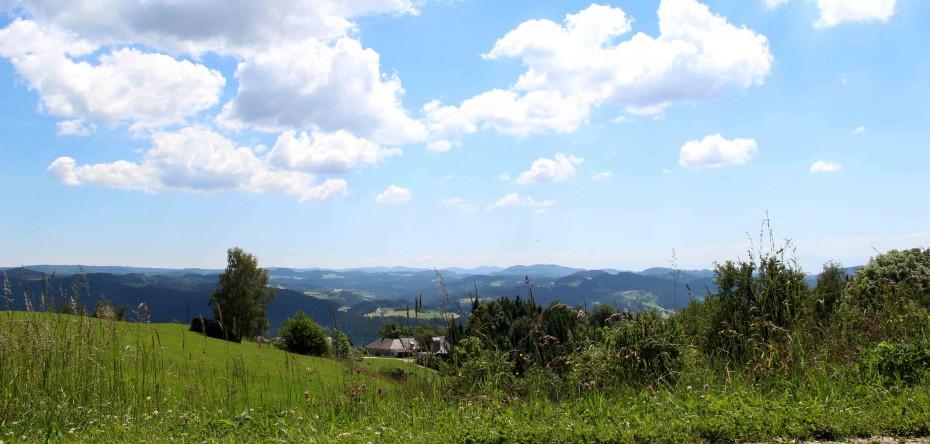 Region Mühlviertel