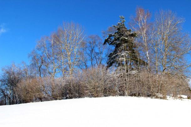 winter-dez-2016-1