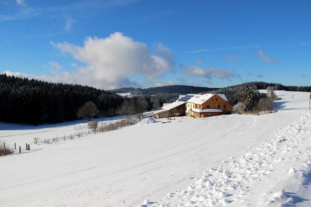 winter-dez-2016-2